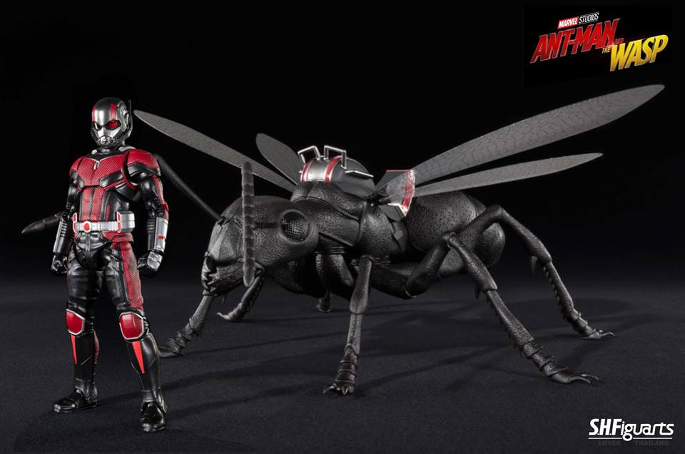 S.H.Figuarts Ant-Man and Ant Set from  Ant-Man and the Wasp Ver.