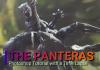 Photoshop Tutorial Time Lapse The Panteras