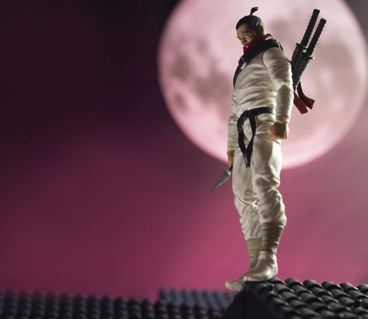 White Ninja Under The Moon